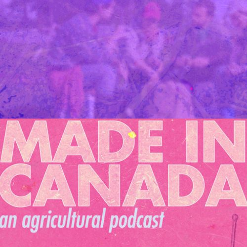 The MIC album cover featuring farm workers under a mauve overlay + the MIC podcast cover - am overview of agricultural land with a shovel to the right with a dark pink overlay