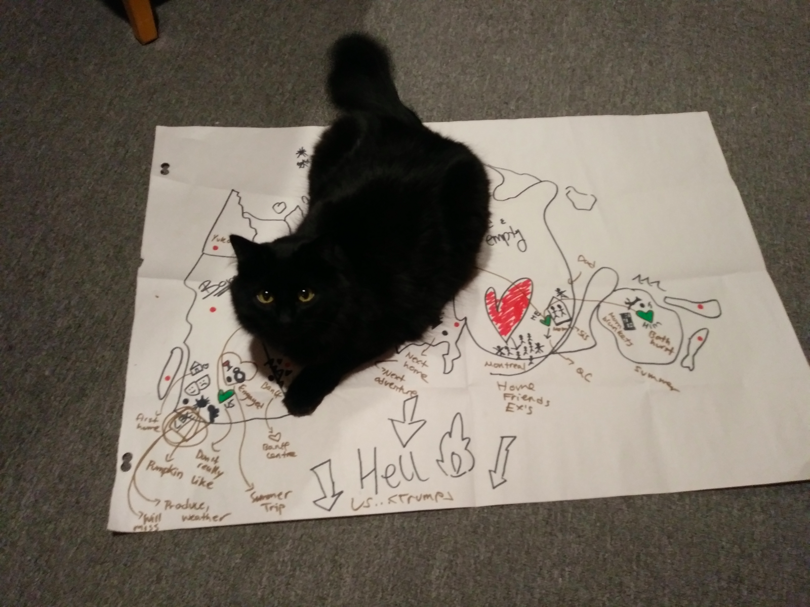 black cat sitting atop a paper with a character mapping exercise for Block A