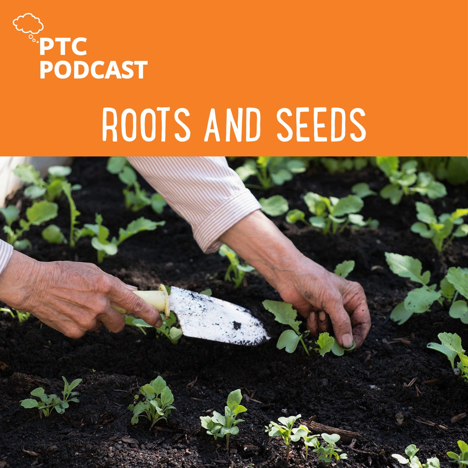 Roots and Seeds Podcast image of woman's hands tending garden