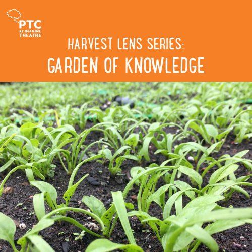 Harvest Lens Series Garden of Knowlegde