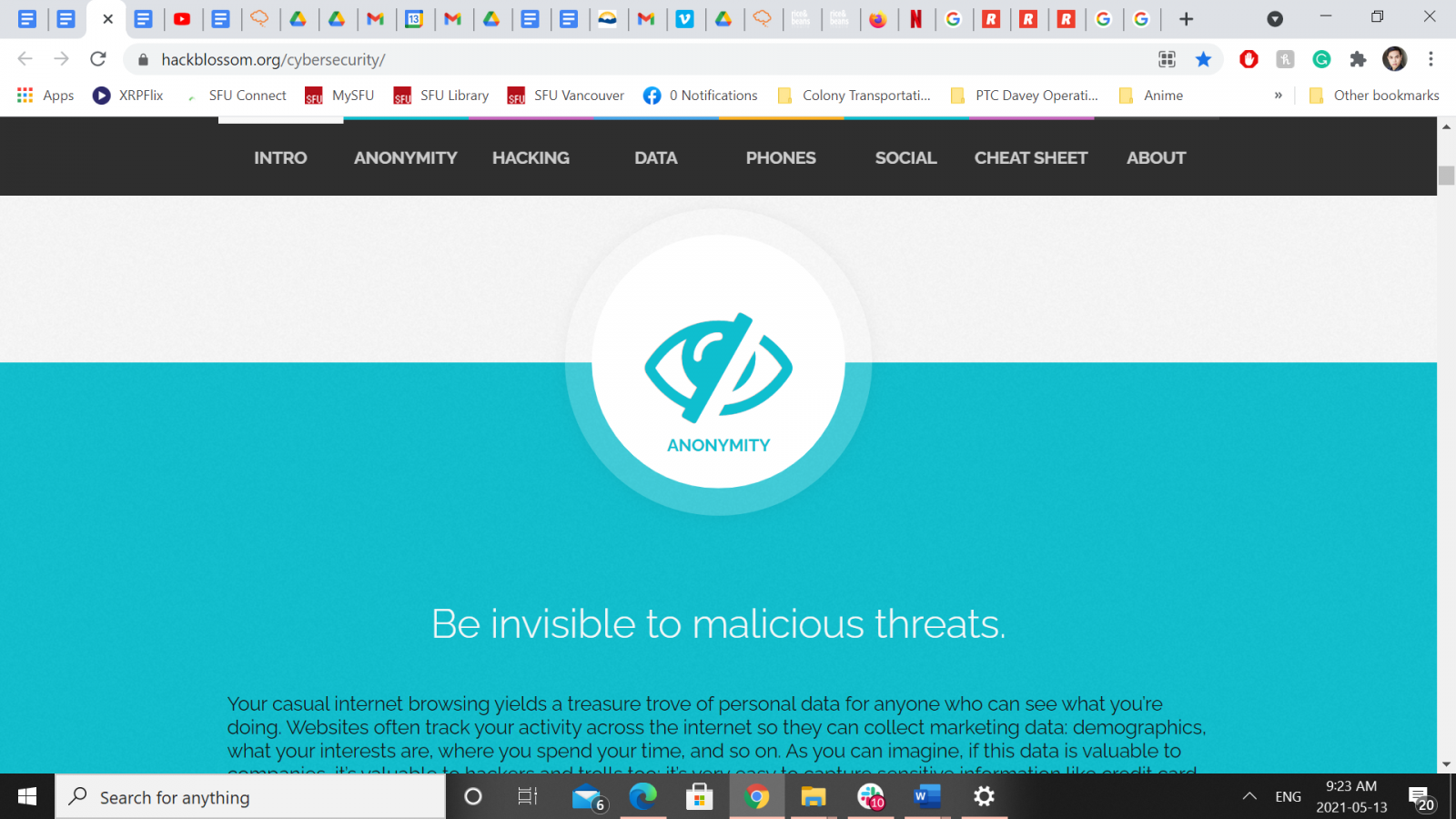 Screenshot of A DIY Guide to Feminist Cybersecurity webpage - a white block above a teal block with an image of an eye with a slash through it and the words